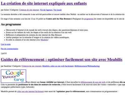 Capture d'écran du Blog Nethik avec les styles désactivés